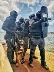 training K-9 Aruba 2019-1