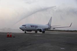 Wingo -1